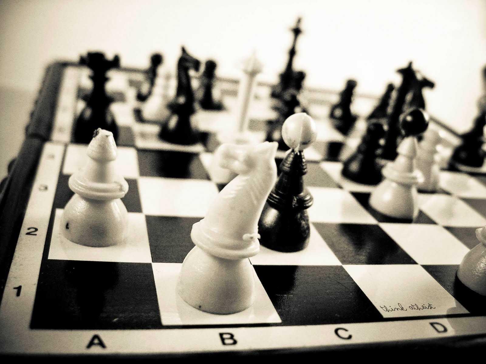 Bir Satranç Başarısı Daha...